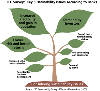 Key Sustainability Issues According to Banks